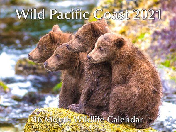 Wild Pacific Coast 16 Month Calendar 2021