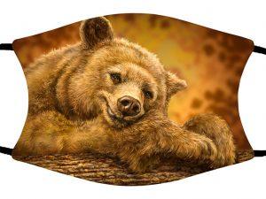 Sleep Bear face mask