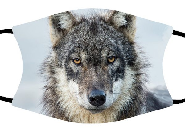 Wolf Profile face mask