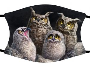 One In Every Family (Owls) face mask