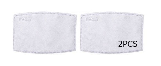Face Mask Filters (2 pack)